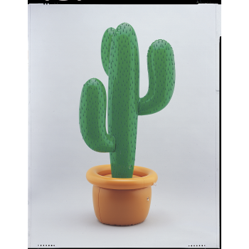 Picture of INFLATABLE CACTUS
