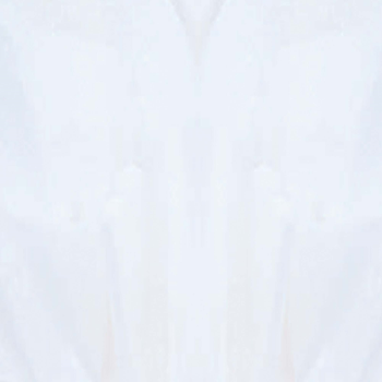 Picture of WHITE TISSUE SHEETS