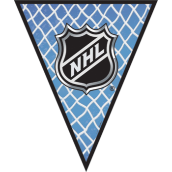 Picture of NHL PENNANT BANNER