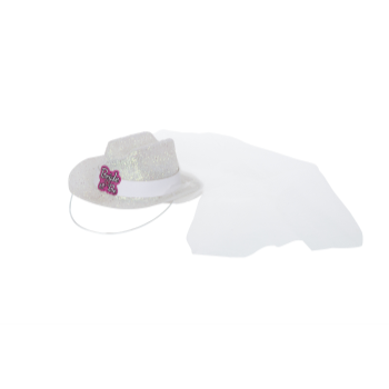 Image de BRIDE TO BE MINI WHITE COWBOY HAT W/ VEIL