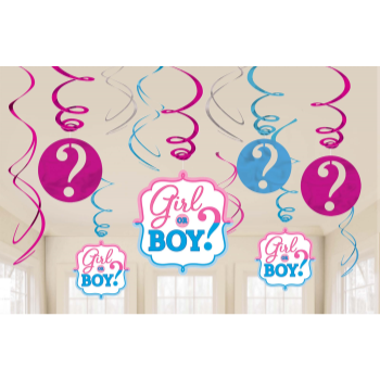 Picture of GENDER REVEAL - GIRL OR BOY? SWIRLS