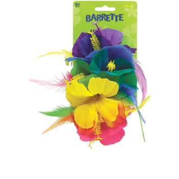 Picture of RAINBOW DLX HAIR CLIP