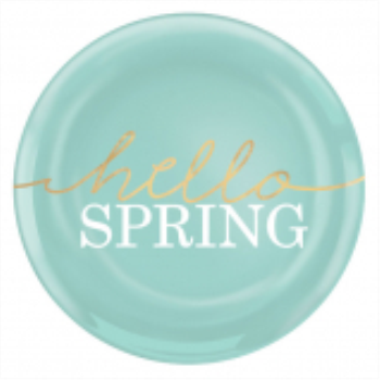 """Picture of 7"""" PLATES - PLASTIC HELLO SPRING"""