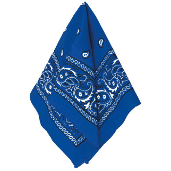 Picture of BLUE BANDANAS