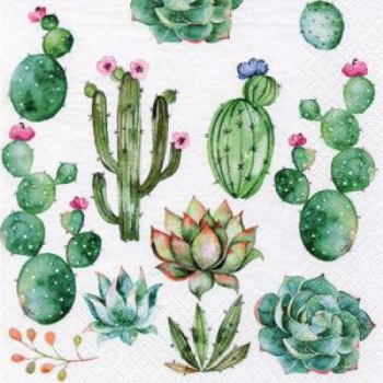 Picture of GREEN CACTUS - LUNCHEON NAPKINS