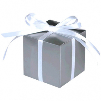 """Picture of 2""""X2"""" FAVOR BOXES - SILVER"""
