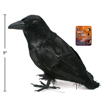 Picture of BLACK CROW 9''