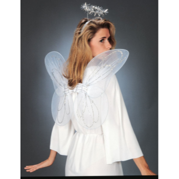 Image de ANGEL ACCESSORIES - ADULT