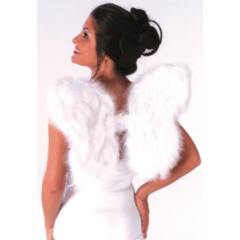 Image de ANGEL WINGS - FEATHER - WHITE