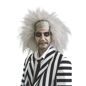 Picture of BEETLEJUICE DELUXE WIG - ADULT