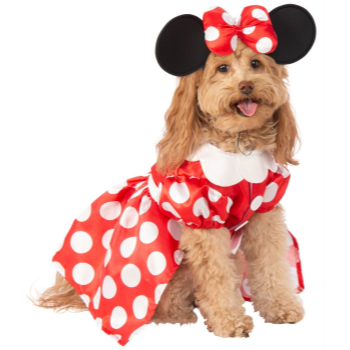 Image de MINNIE MOUSE DOG COSTUME - LARGE