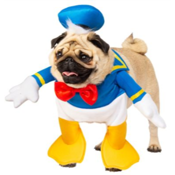 Image de DONALD DUCK DOG COSTUME - MEDIUM