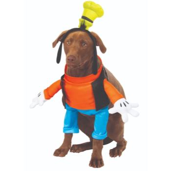 Image de GOOFY DOG COSTUME - SMALL