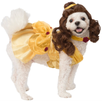 Image de BELLE DOG COSTUME - MEDIUM