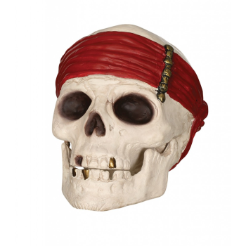 Image de SKULL WITH MOVABLE JAW PROP