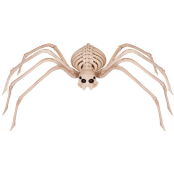 "Picture of 33"" SKELETON SPIDER"