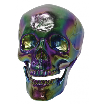 "Picture of 7"" OIL SLICK SKULL"