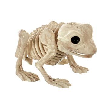 "Picture of 7"" LG SKELETON FROG"