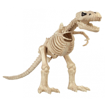 "Picture of 16"" T REX SKELETON"