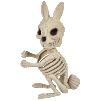 "Picture of 6"" BUNNY SKELETON"