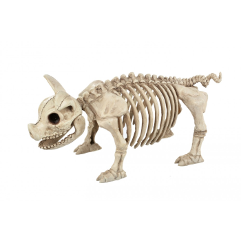 "Picture of 14"" STANDING PIG SKELETON"