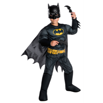 Picture of DELUXE BATMAN - MEDIUM