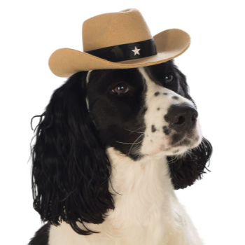 Image de COWBOY HAT - SMALL/MEDIUM