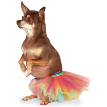 Image de RAINBOW TUTU - SMALL/MEDIUM