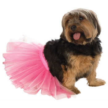 Image de PINK TUTU - SMALL/MEDIUM