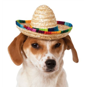 Image de SOMBRERO MULTICOLOUR - SMALL/MEDIUM
