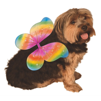 Image de RAINBOW FAIRY WINGS - MEDIUM/LARGE