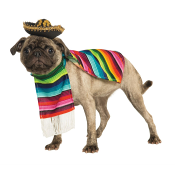 Image de MEXICAN SERAPE WITH HAT - LARGE
