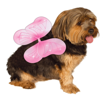Image de BUTTERFLY WINGS PINK - MEDIUM/LARGE
