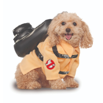 Image de GHOSTBUSTER - MEDIUM
