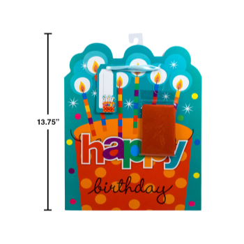 Picture of BIRTHDAY CAKE GIFT BAG WITH TISSUE - LARGE