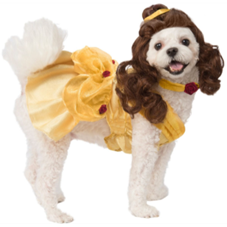 Picture for category COSTUMES - Pets