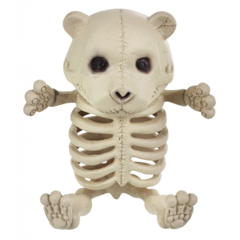 "Picture of 5"" BABY BEAR SKELETON"