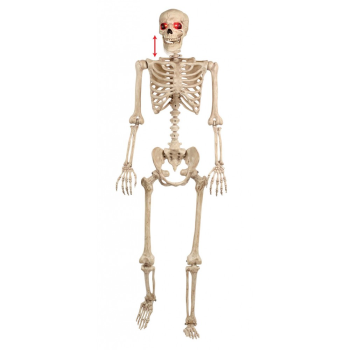 Picture of 5' ANIMATED SKELETON W/ LED EYES AND SOUND