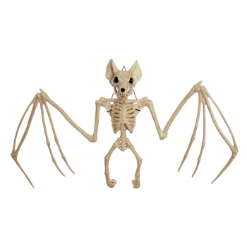 "Picture of 22.5"" LARGE BAT SKELETON"